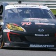 Andrew Henderson was at New Jersey Motorsports Park for the Rolex Grand Am Series race that took place over the weekend.  Held in sunny conditions, the Suntrust Dallara Corvette took...